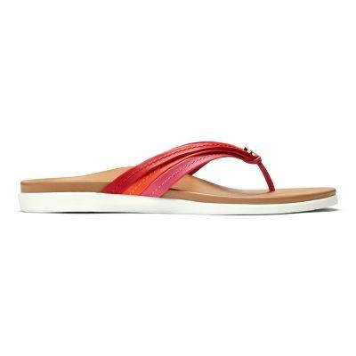Catalina Toe Post Sandal